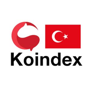 トルコkoindex