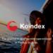 koindex-800x640